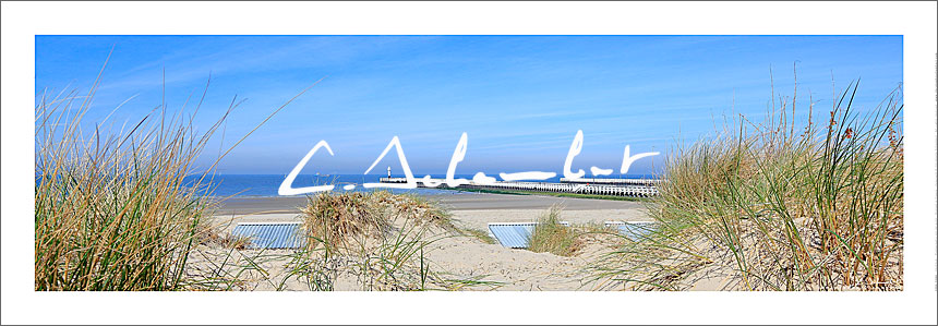 Beach, dunes and pier of Nieuwpoort in summer, panoramic view, Belgian Coast, North Sea, Belgium. Photo poster and art print. Image Gallery and picture Christophe Schambert