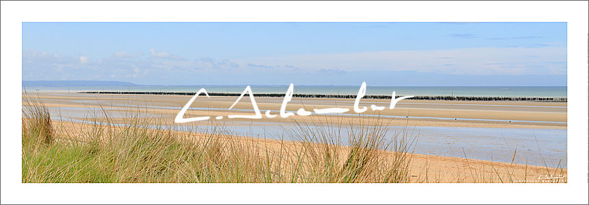 Poster Photo Utah Beach - Dunes - Normandie - France - Christophe Schambert