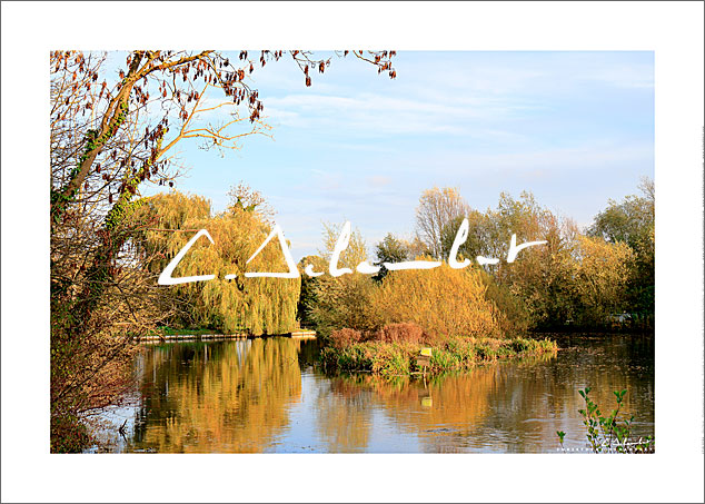 Marshes ni autumn, Hortillonnages of Amiens, floating gardens, Valley of Somme, Picardy, Hauts-de-France, France. Photo poster and art print. Image Gallery and picture Christophe Schambert